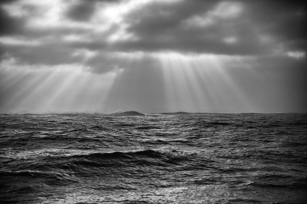 ocean_thepacific2_site